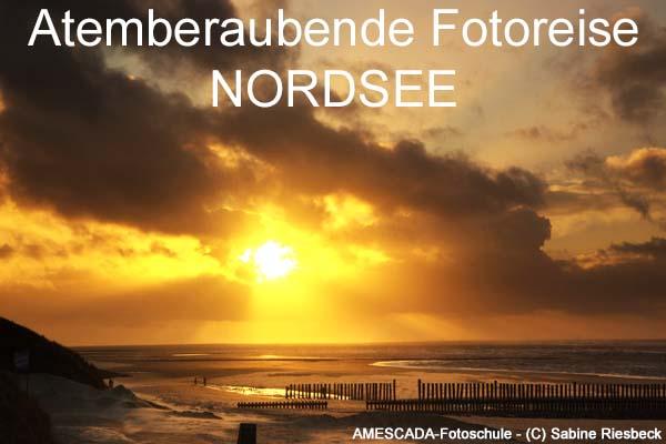 Atemberaubende Fotoreise Nordsee mit der besten Fotoschule der W